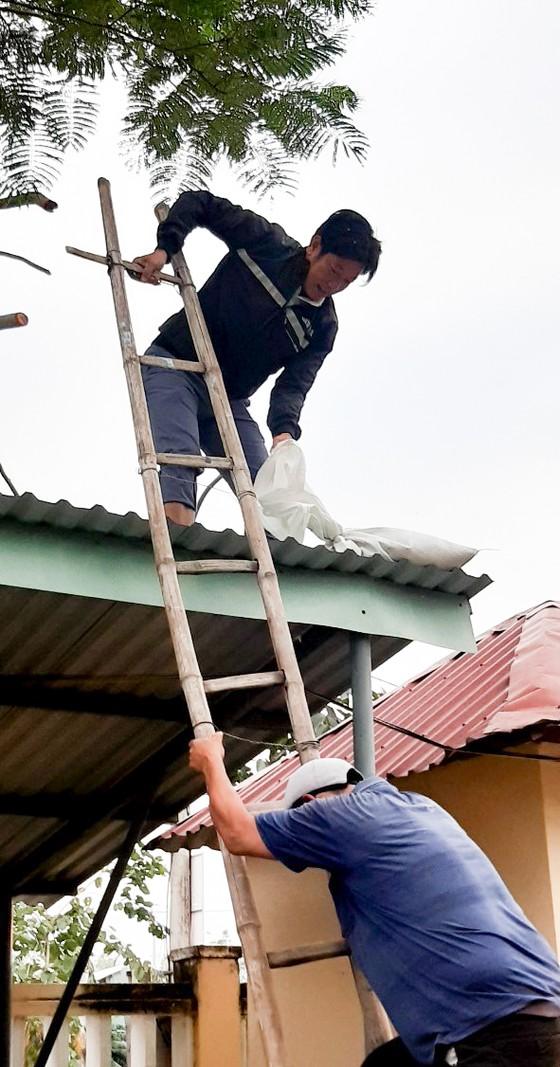 Đà Nẵng: Tạo điều kiện cho địa phương sử dụng cơ sở giáo dục làm nơi tập kết, sơ tán dân ảnh 6