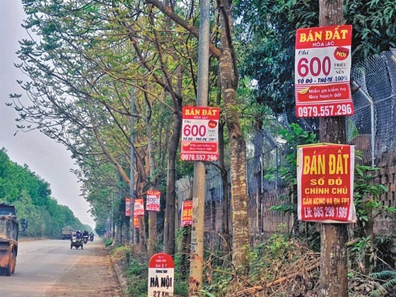 HoREA đề xuất đánh thuế cao người sở hữu nhiều nhà đất để trị sốt đất! ảnh 1