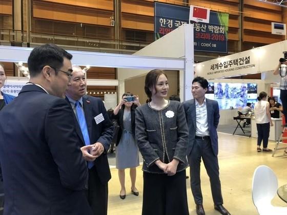 Sunshine Homes gây ấn tượng tại Realty Korea Expo 2019 ảnh 4