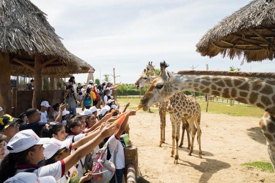 Người dân miền Trung, Tây Nam Bộ tận hưởng ưu đãi chưa từng có từ Vinpearl Land và Safari ảnh 1