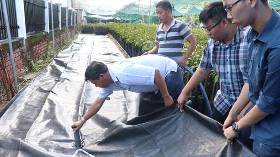 Người dân Bến Tre đối phó hạn mặn bằng túi trữ nước  ảnh 1