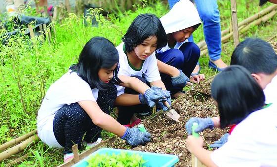 Lớp học ở vườn ảnh 2