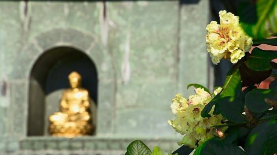 Gợi ý hành trình du lịch Sa Pa ngon bổ rẻ chỉ có trong dịp này ảnh 3