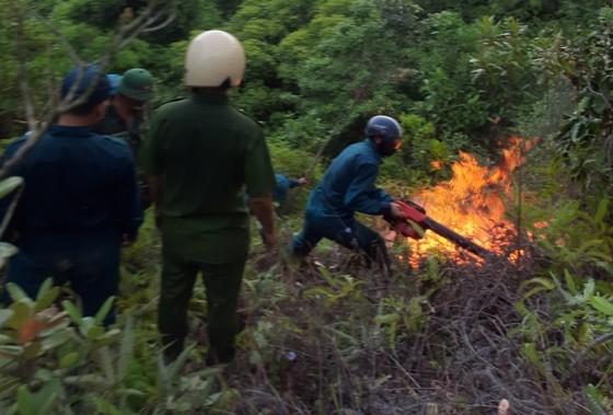 Huy động gần 700 người tham gia dập tắt vụ cháy rừng ở Đà Nẵng ảnh 1