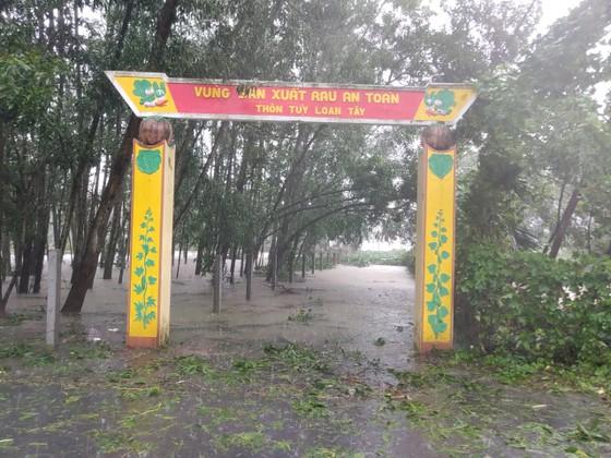 Đà Nẵng sơ tán gần 3.000 người do ảnh hưởng của mưa lũ và bão số 6 ảnh 6
