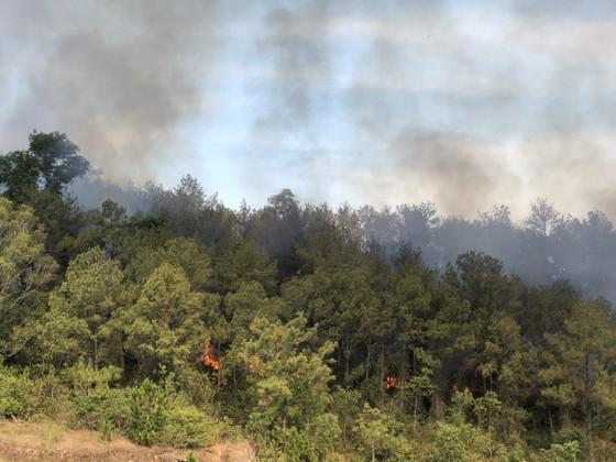 Dập tắt vụ cháy rừng thông ở Quảng Nam ảnh 1