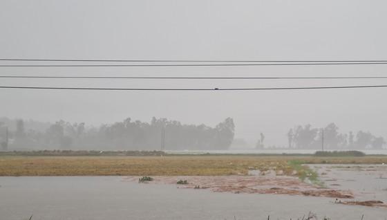 Nhiều nơi tại Quảng Nam bị ngập cục bộ do ảnh hưởng bão số 5 ảnh 5