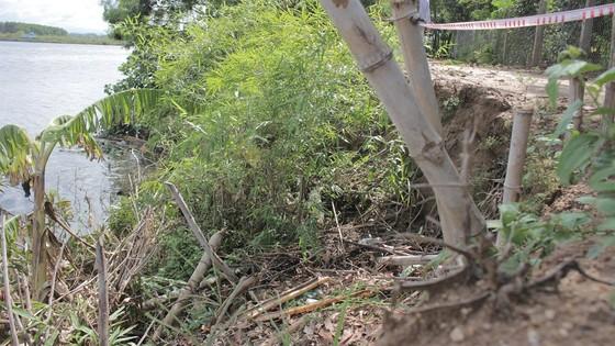 Sạt lở bủa vây ven sông Thạch Hãn, người dân thấp thỏm lo âu ảnh 4