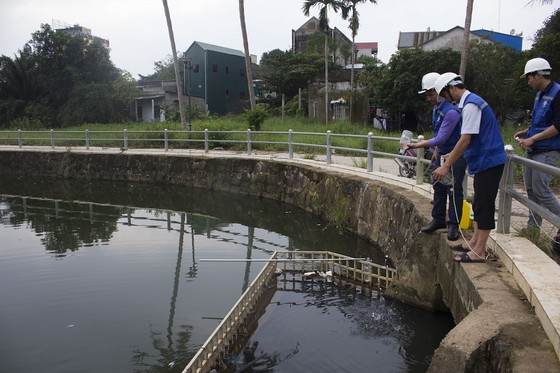 Hàng tấn cá chết bất thường bốc mùi hôi thối nổi đầy hồ Đại An ảnh 2