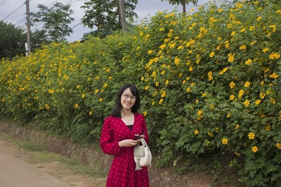 Độc đáo đường hoa dã quỳ nơi miền tây Quảng Trị ảnh 3