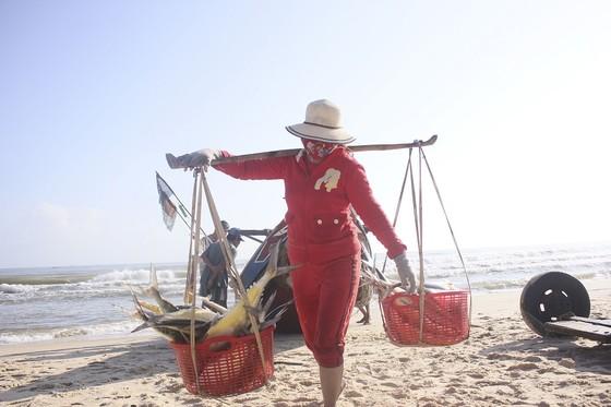 Ngư dân được mùa cá bè xước những ngày giáp tết ảnh 3