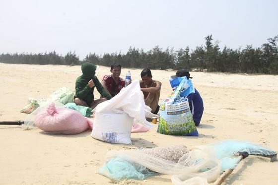 Ngư dân vùng bãi ngang Quảng Trị được mùa ốc ruốc ảnh 12
