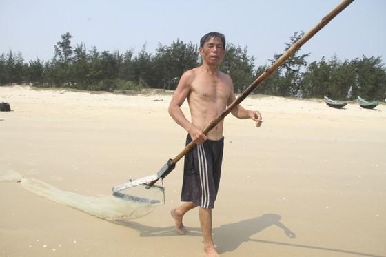 Ngư dân vùng bãi ngang Quảng Trị được mùa ốc ruốc ảnh 2