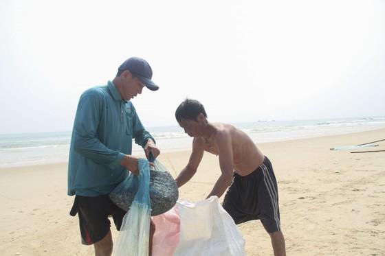 Ngư dân vùng bãi ngang Quảng Trị được mùa ốc ruốc ảnh 7