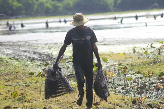 Hàng trăm người reo hò, lội bùn bắt cá cầu may  ảnh 12