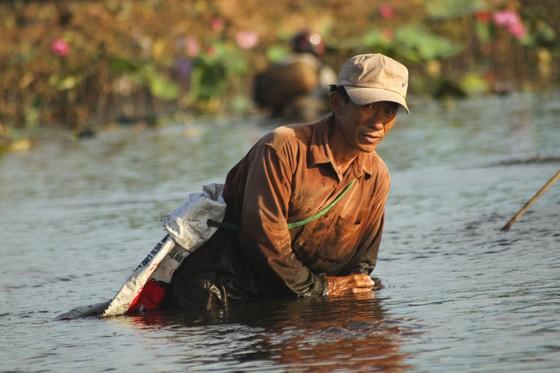 Hàng trăm người reo hò, lội bùn bắt cá cầu may  ảnh 8