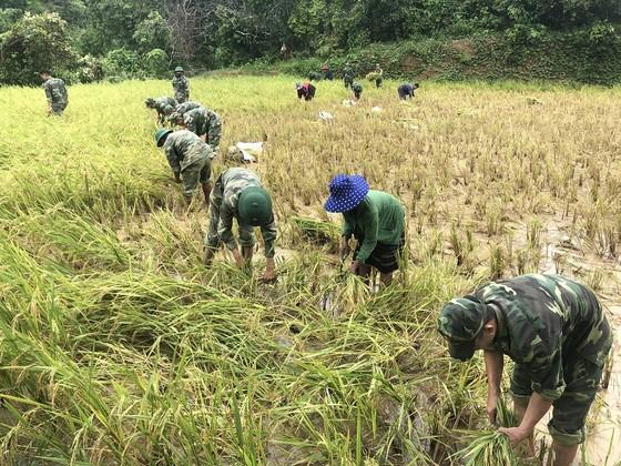 Quảng Trị: Nỗ lực hỗ trợ người dân khắc phục hậu quả bão số 5 ảnh 7