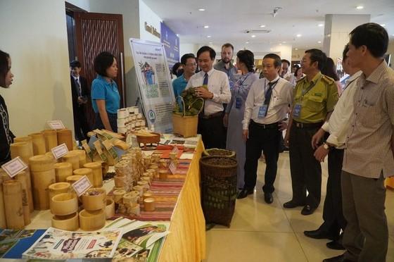 Quảng Trị nhận 1.200 tỷ đồng vốn viện trợ không hoàn lại ảnh 1