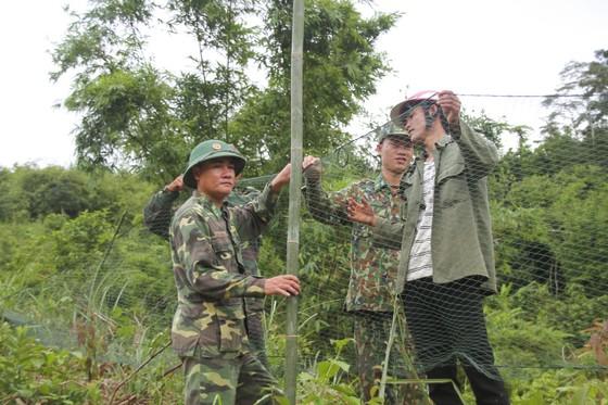 Căng lưới vây núi ngăn đàn voọc tấn công người ảnh 3