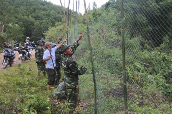 Căng lưới vây núi ngăn đàn voọc tấn công người ảnh 7
