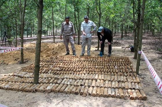 Phát hiện hầm chứa gần 500 quả đạn cối, lựu đạn trong rừng keo ảnh 1