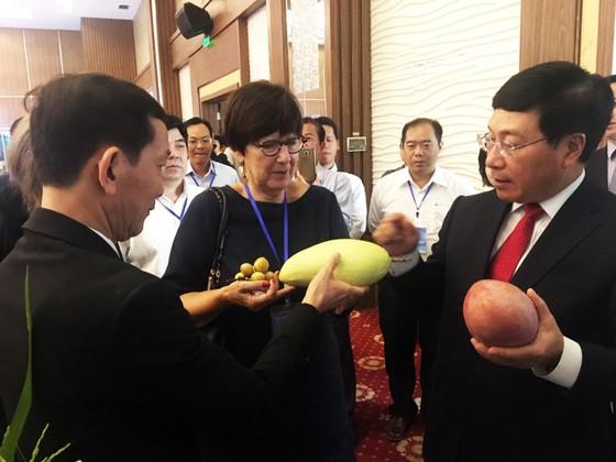 Phó Thủ tướng Phạm Bình Minh: ASEM cùng hành động mạnh mẽ ứng phó biến đổi khí hậu ảnh 4