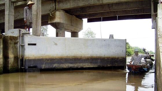 ĐBSCL - Nước mặn xâm nhập sâu vào đúng dịp Tết nguyên đán ảnh 2