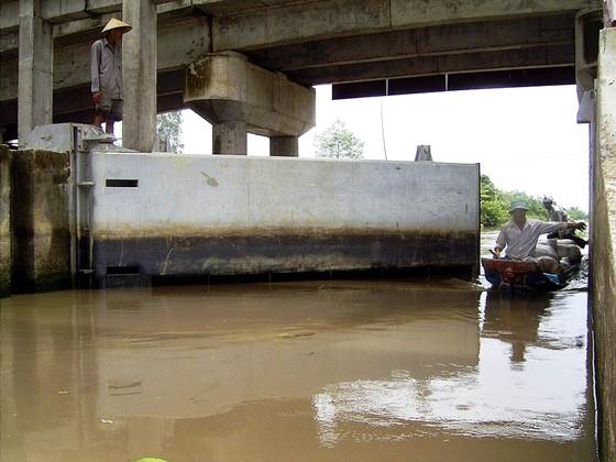 Trực 24/24 trong ngày tết để giám sát nước mặn xâm nhập ảnh 2