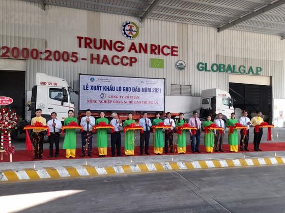 Xuất khẩu lô gạo đầu tiên năm 2021 sang Singapore và Malaysia ảnh 1