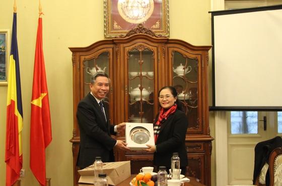 Đoàn đại biểu cấp cao HĐND TPHCM thăm và làm việc tại Romania ảnh 3