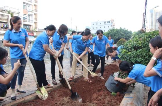 Quận 5 ra quân dọn vệ sinh, trồng cây, tặng cây cho người dân ảnh 5