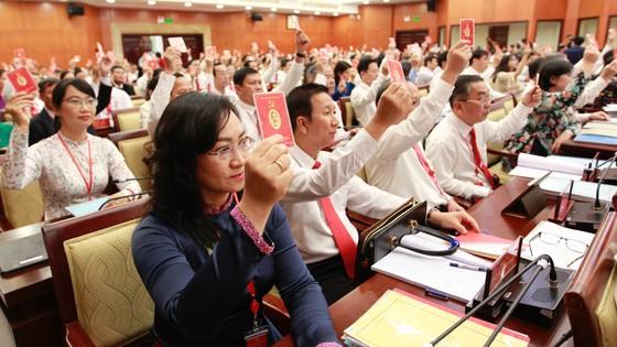 Đại hội đại biểu Đảng bộ TPHCM lần thứ XI họp phiên trù bị ảnh 3