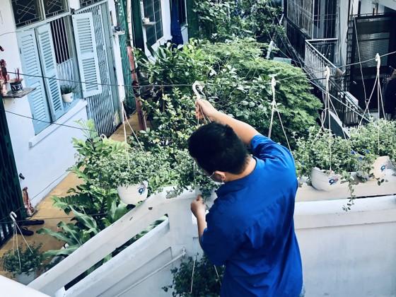 Quận 5 ra quân tổng vệ sinh, trồng cây mừng ngày thống nhất đất nước ảnh 2