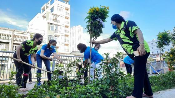 Quận 5 ra quân tổng vệ sinh, trồng cây mừng ngày thống nhất đất nước ảnh 3