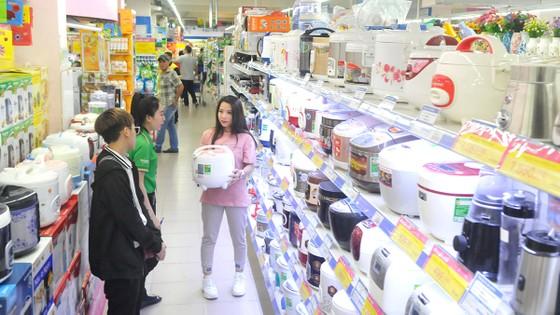 Tạo điều kiện cho hàng Việt phát triển bền vững  ảnh 1