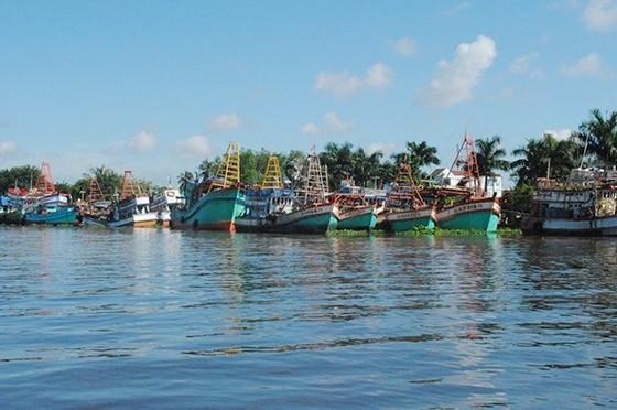 Hàng loạt tàu cá Kiên Giang nằm bờ  ảnh 1