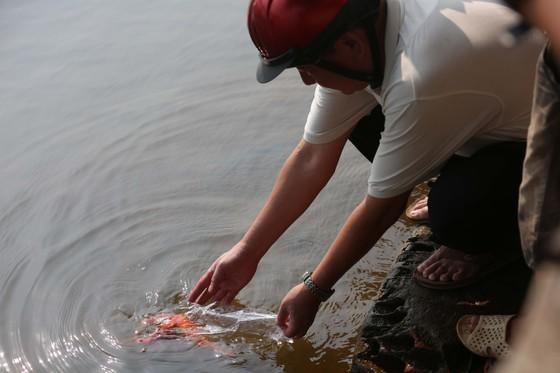 Thả cá chép ngày 23 tháng Chạp…cầu mong sự bình an ảnh 7