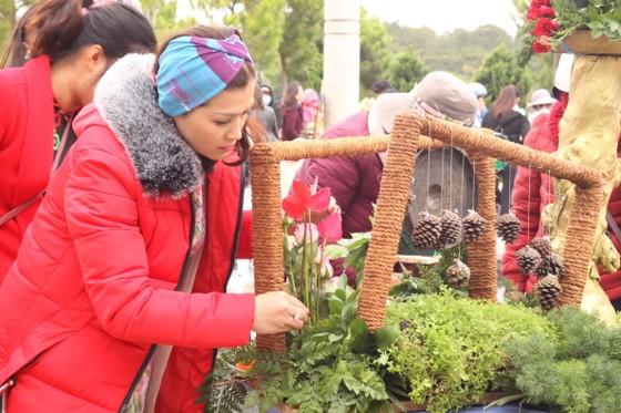 Xem người dân Đà Lạt và du khách trổ tài cắm hoa ảnh 3