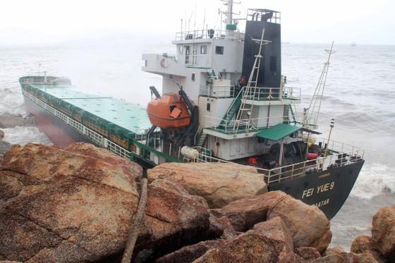 Xử lý sự cố tràn dầu ở rò rỉ ở 9 tàu hàng bị nạn tại vùng biển Quy Nhơn  ảnh 4