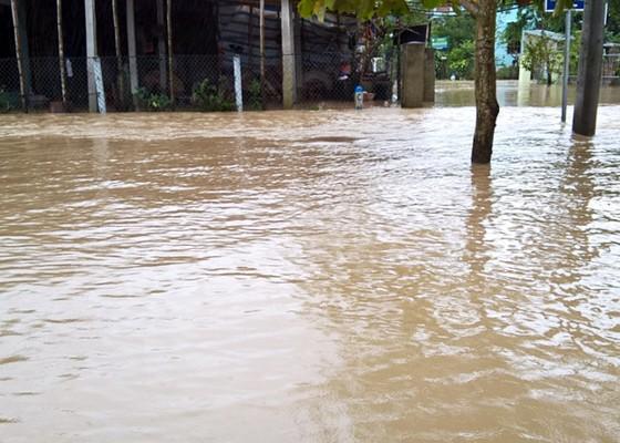 """Bình Định - Phú Yên: Mưa lũ tiếp tục hoành hành, nhiều địa phương chìm trong """"biển lũ"""" ảnh 6"""