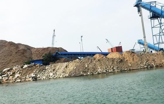 Bình Định yêu cầu DN tạm dừng các hoạt động xâm lấn cảng cá ảnh 5