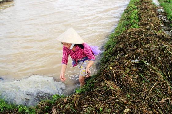 """Cuối năm lũ vẫn đang """"vây ráp"""" Phú Yên và Bình Định, 1 người chết vì lũ cuốn  ảnh 8"""