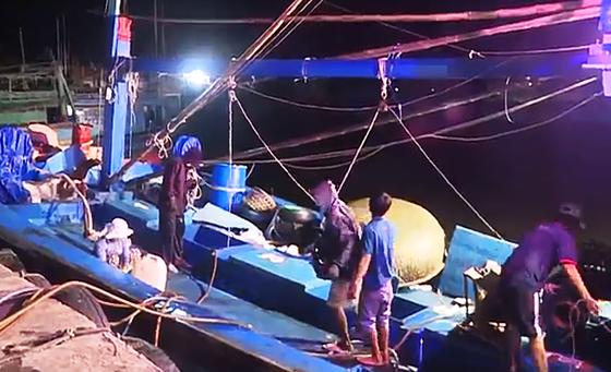 Ăn tết trên biển, một tàu cá Bình Định trúng mẻ cá bò gù 350 triệu ở đảo Hoàng Sa ảnh 1