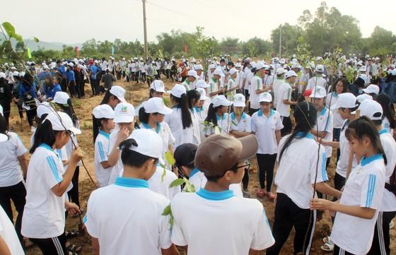 Trồng mới 2 triệu cây xanh phát động Tháng Thanh niên 2019 ảnh 3
