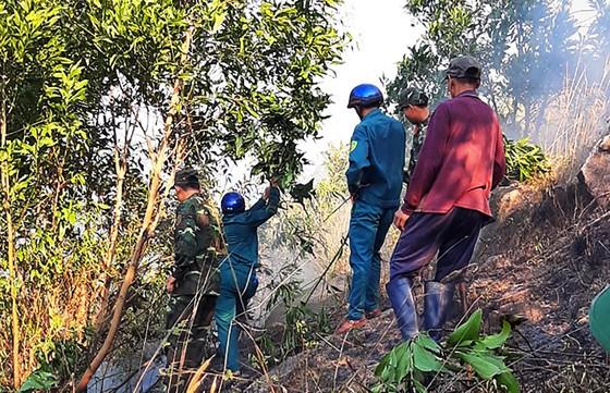 Trên 100 người cật lực dập lửa ở rừng Đèo Cả để bảo vệ rừng và nhà cửa ảnh 3