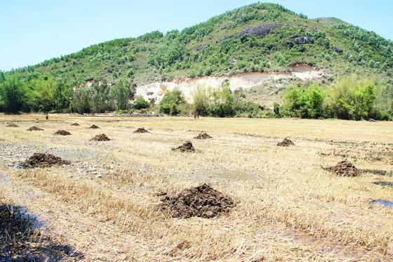 Vụ đất tặc lộng hành đào phá núi Mò O: Vì sao chưa đối thoại, công khai kết quả xử lý? ảnh 5