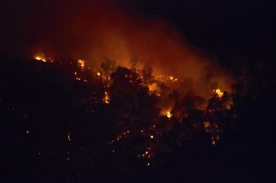 Núi giữa thành phố Quy Nhơn bùng lửa, uy hiếp hàng trăm hộ dân ảnh 3