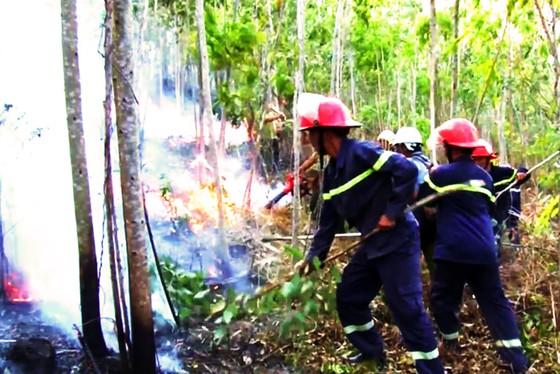 Hơn 2 ngày chiến đấu cật lực với lửa lớn ở núi Kỳ Lễ ảnh 3