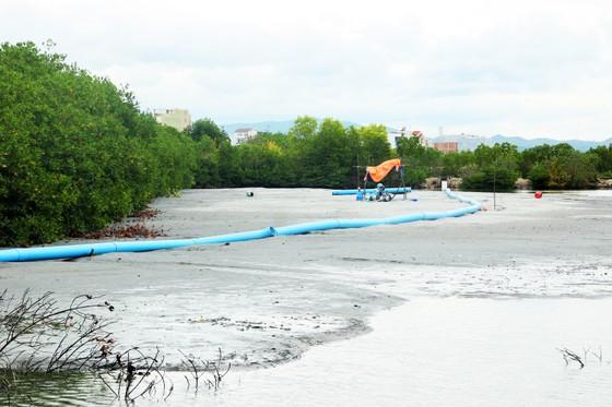 Bình Định chỉ đạo khẩn trương làm rõ trách nhiệm doanh nghiệp hút cát ở đầm Thị Nại ảnh 2