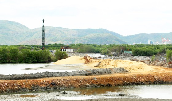Bình Định chỉ đạo khẩn trương làm rõ trách nhiệm doanh nghiệp hút cát ở đầm Thị Nại ảnh 4